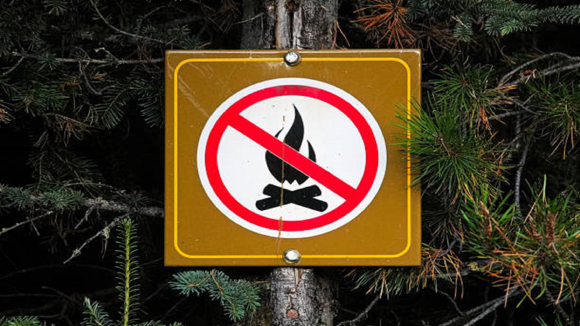 Fire/Burning Ban Effective July 16/2021